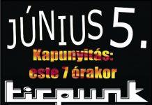 cmjunius5flyer