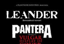 20110125_leander
