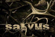salvus 20141214