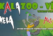 skalazoo flyer 20161226
