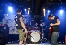 apey-and-the-pea1 20140721